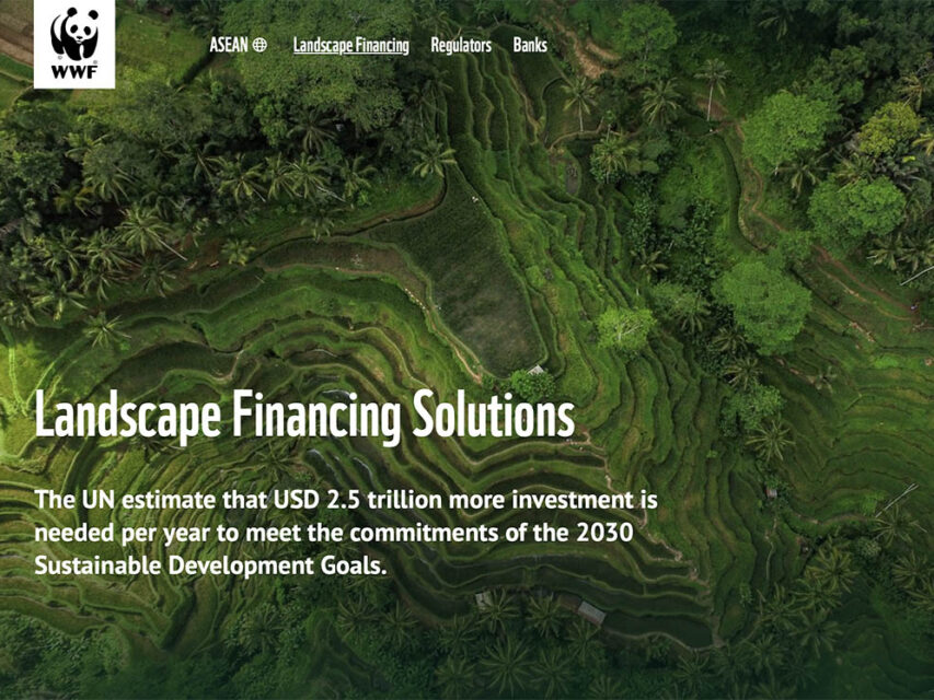WWF — Sustainable finance
